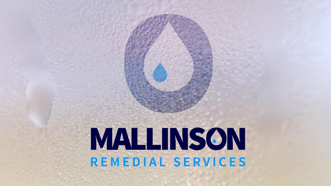 Mallinson Remedial Services, Website logo application
