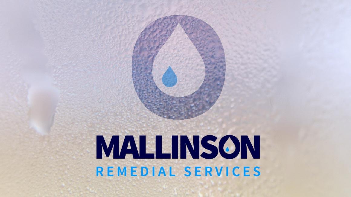Mallinson Remedial Services, Website logo application
